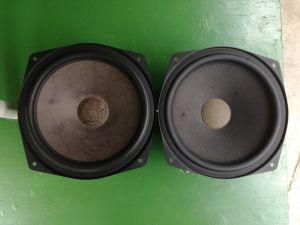 Car Audio Design CAD 300 woofer  bass de 25 cm